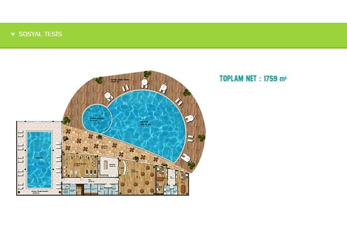 Deniz Kabuğu Evleri