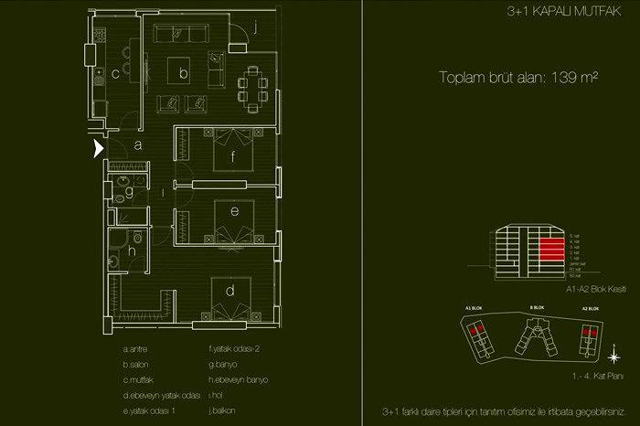 Terrace Koru
